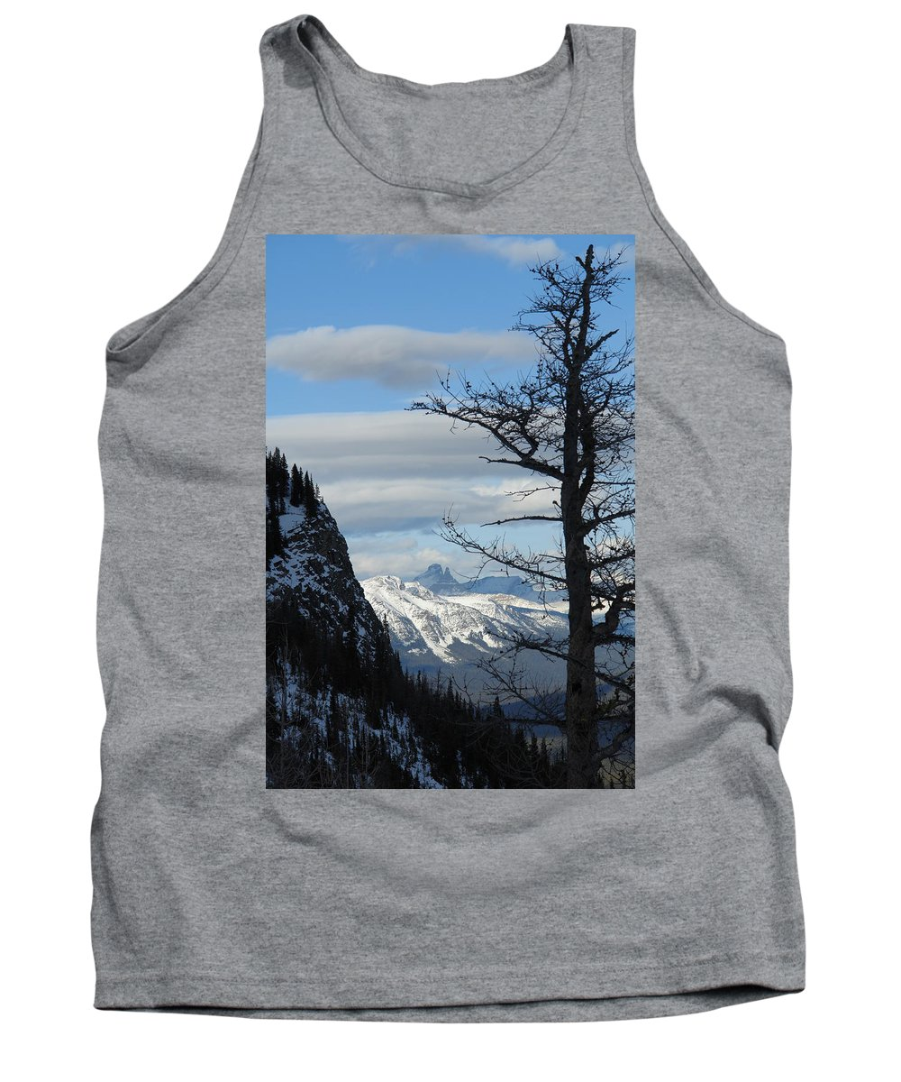 Old Larch Tree Tank Top featuring the photograph Old Larch Tree Has Best View by Greg Hammond