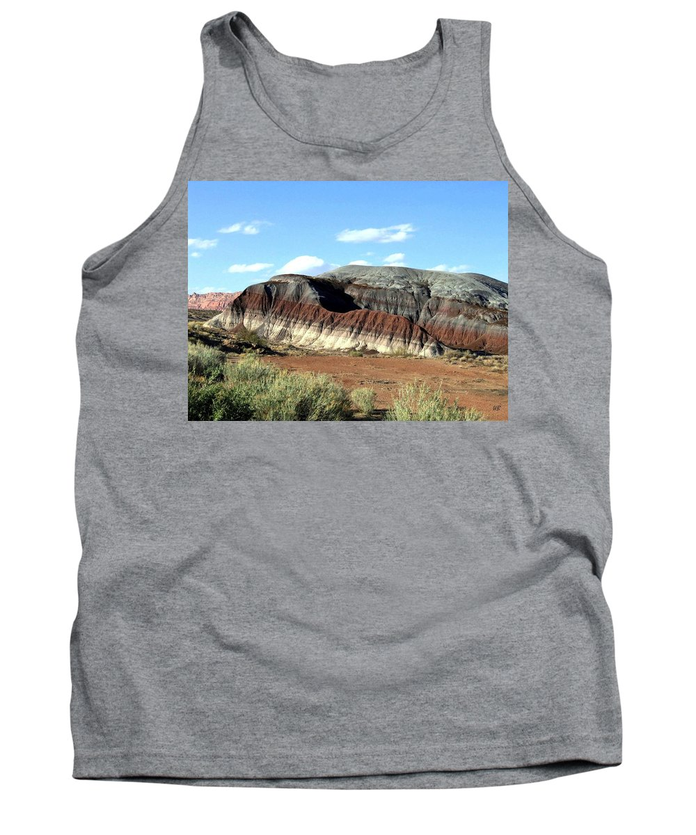 Arizona Tank Top featuring the photograph Painted Desert by Will Borden