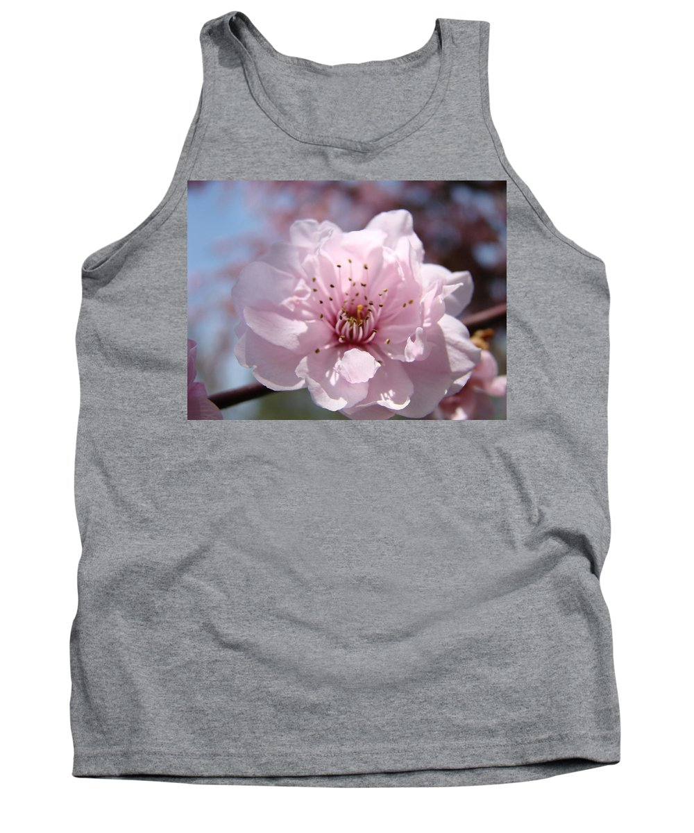 �blossoms Artwork� Tank Top featuring the photograph Pink Blossom Nature Art Prints 34 Tree Blossoms Spring Nature Art by Baslee Troutman