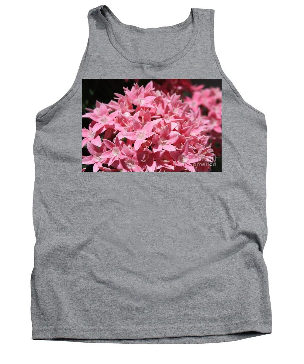 Pink Pentas Tank Top featuring the photograph Pink Pentas Beauties by Carol Groenen