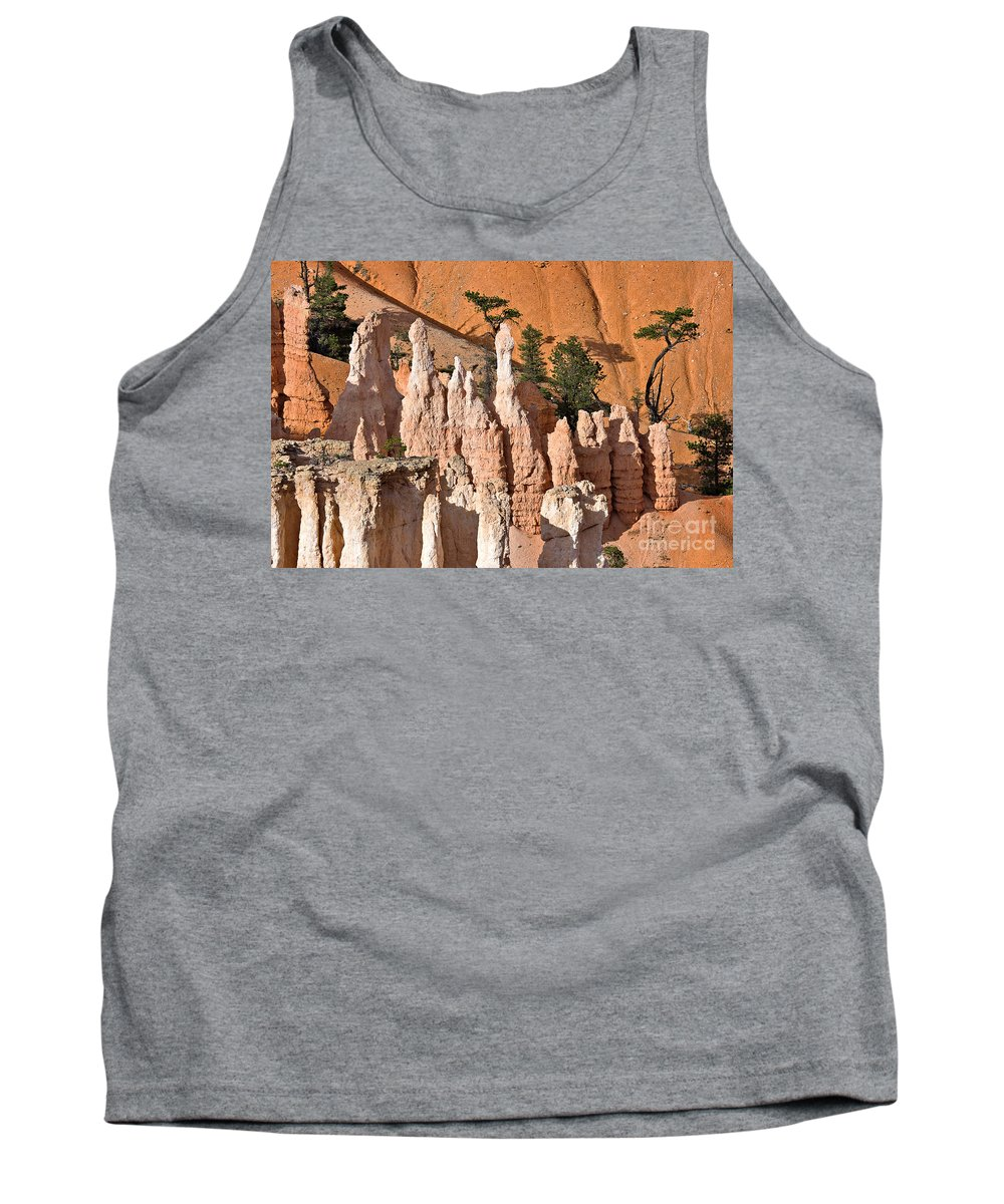 Landscape Tank Top featuring the photograph Pinnacles And Fins At Sunset Point by Louise Heusinkveld