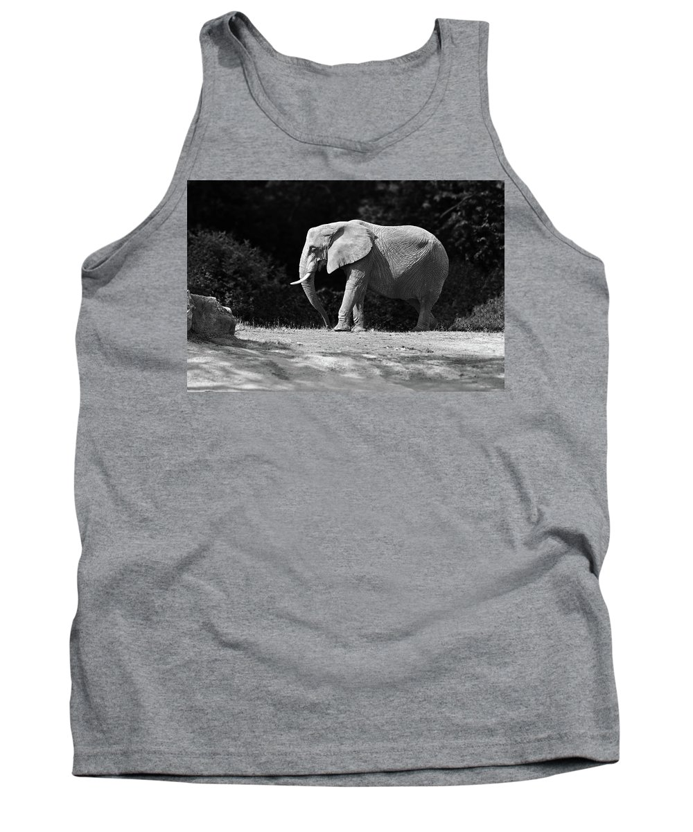Elephant Tank Top featuring the photograph Placid Pachyderm by Paul Conner