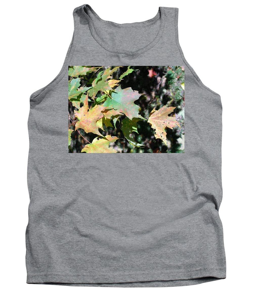 Planting Fields Tank Top featuring the photograph Planting Fields / Leaves by Howard Rose