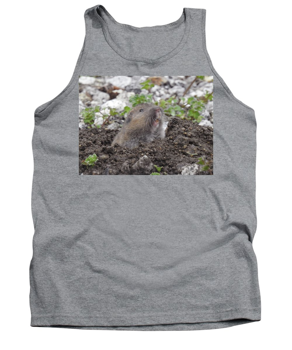 Pocket Gopher Tank Top featuring the photograph Pocket Pal by Sandra O'Toole