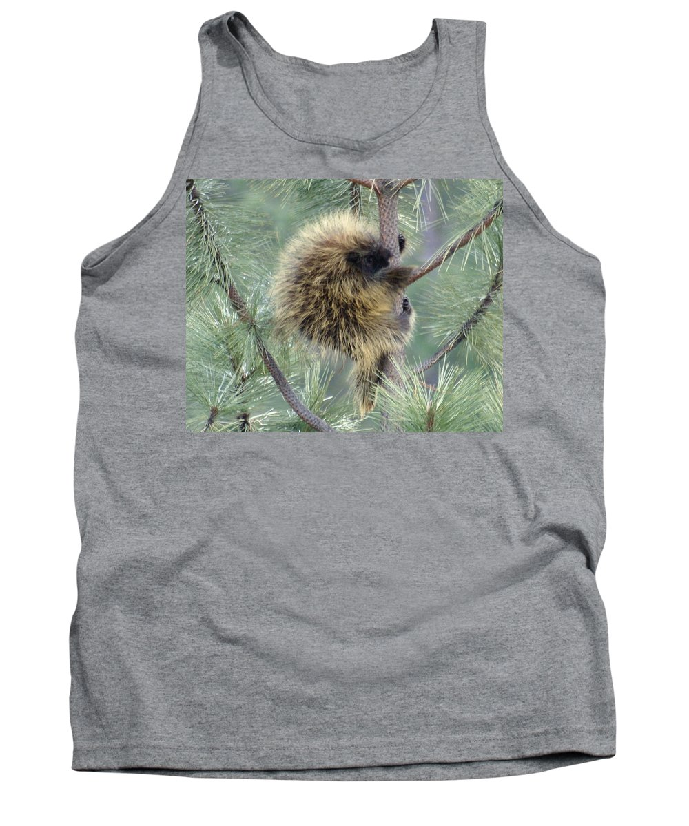 Spokane Tank Top featuring the photograph Porcupine Tree by Ben Upham III