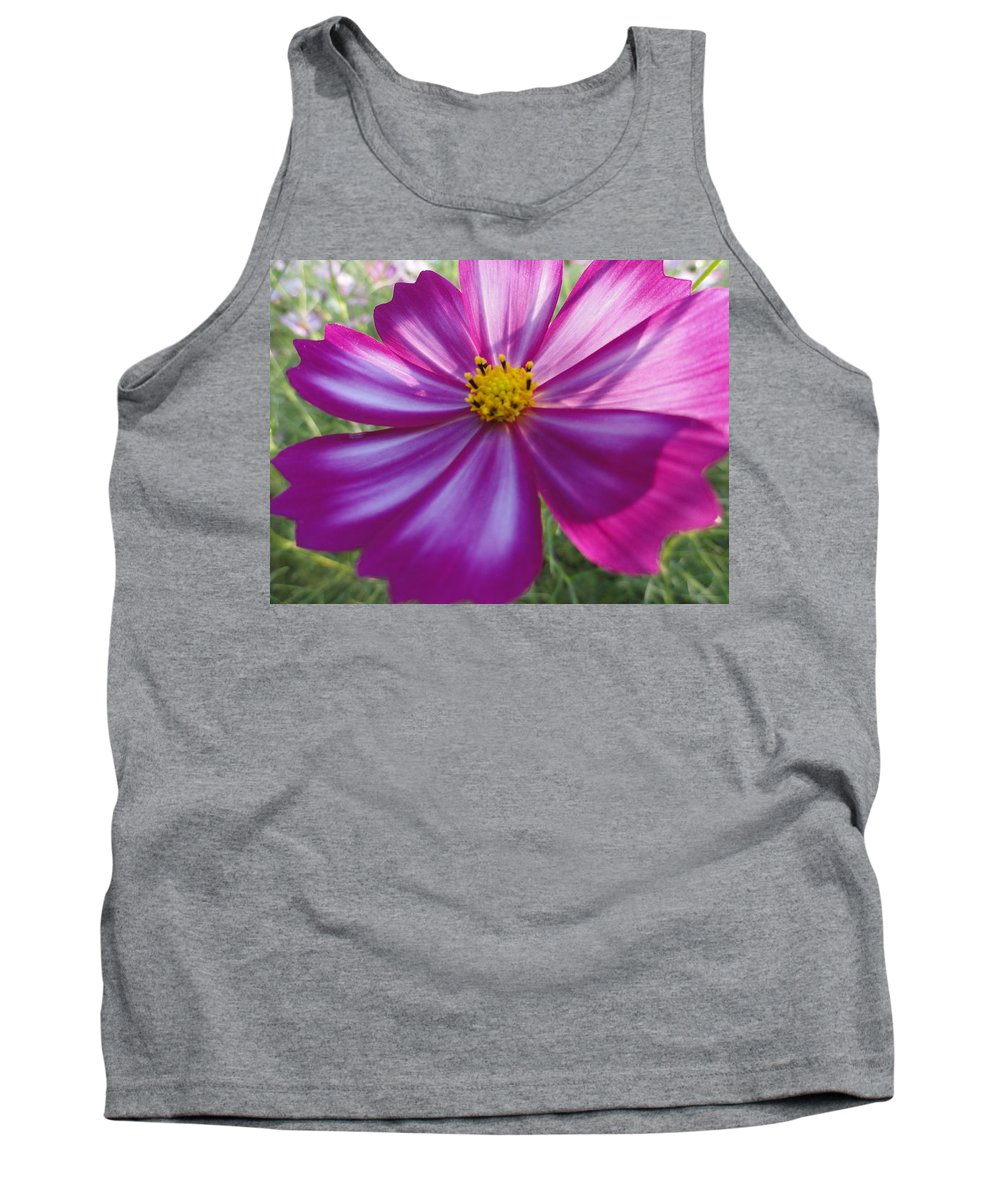 Flower Tank Top featuring the photograph Purple And White Cosmos by Alexander Kuzimski