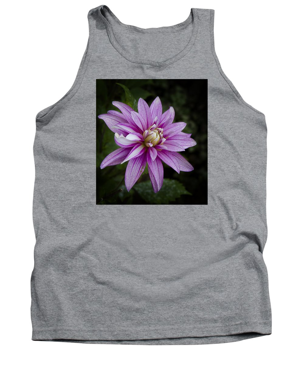 Purple Pink Dahlia Tank Top featuring the photograph Purple Pink Dahlia by Ken Barrett