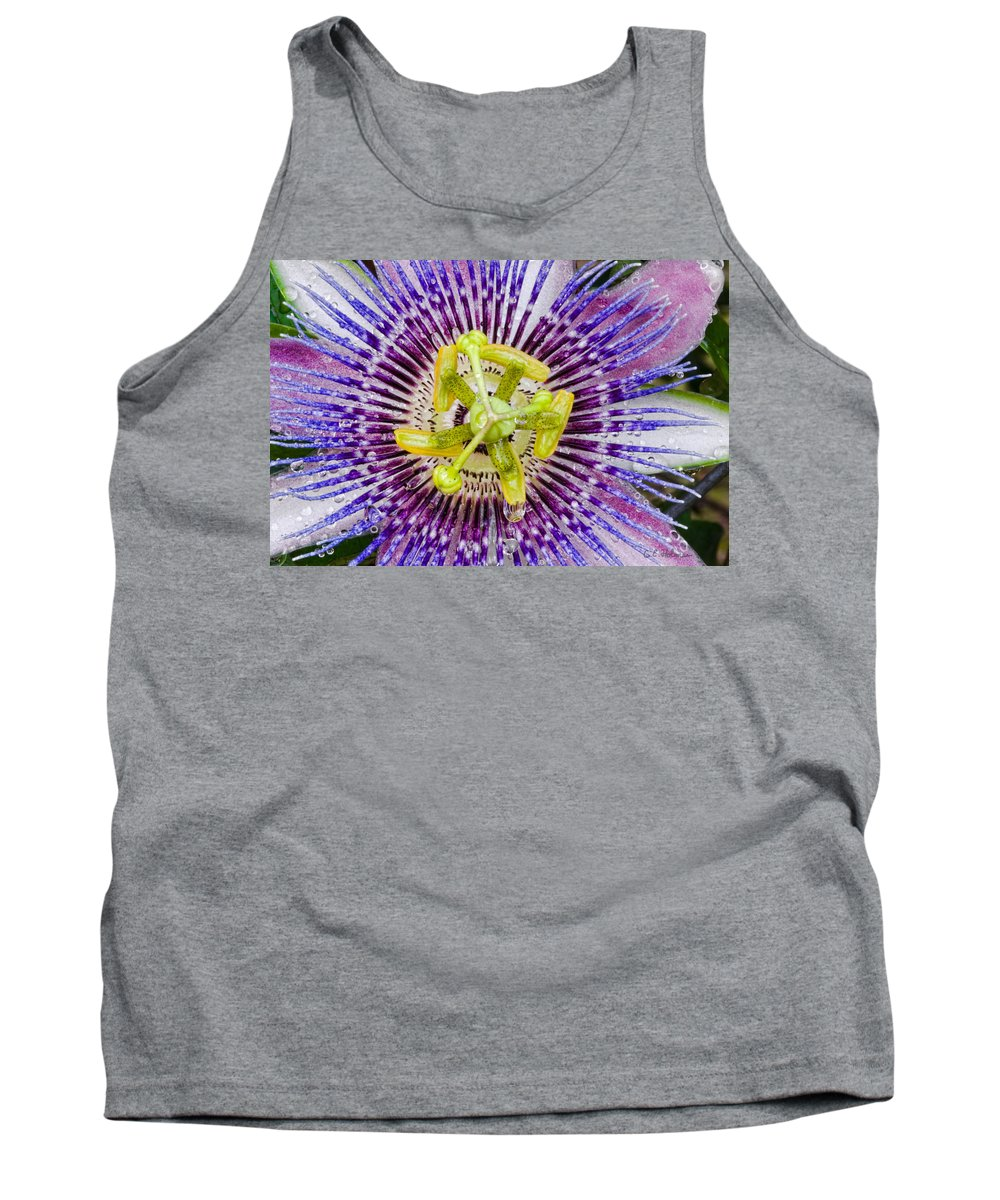 Passion Tank Top featuring the photograph Purple Radial by Christopher Holmes