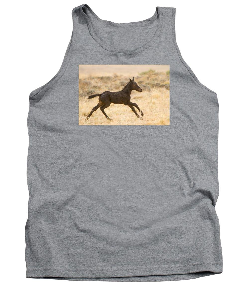Wild Horse Tank Top featuring the photograph Rain Dance by Kent Keller