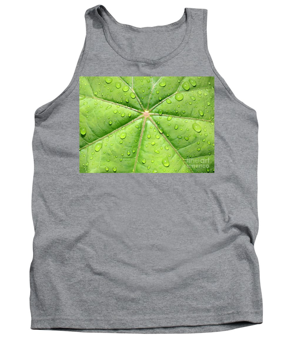 Raindrops Tank Top featuring the photograph Raindrops On Leaf by Carol Groenen