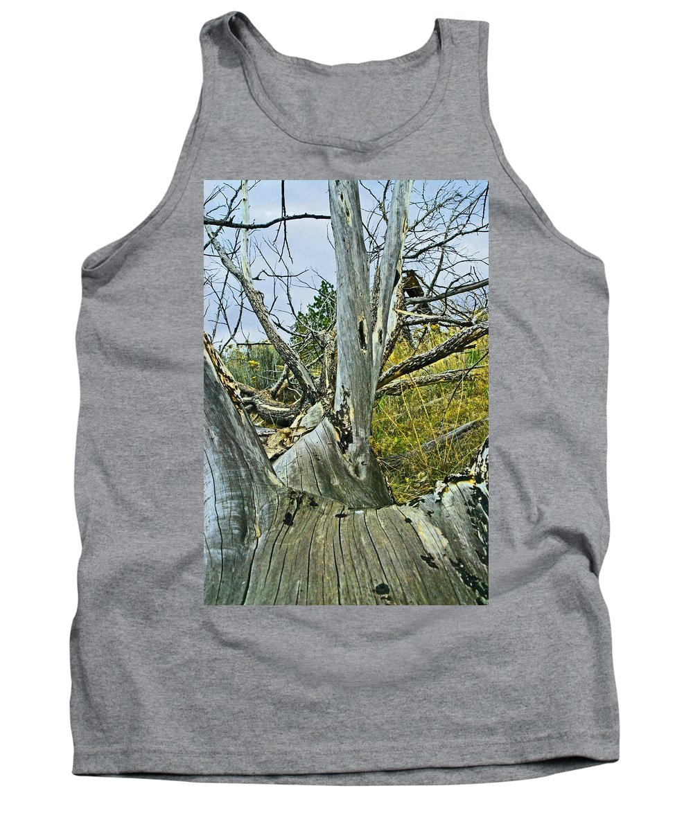Dead Tank Top featuring the photograph Rolling Log by Sara Stevenson