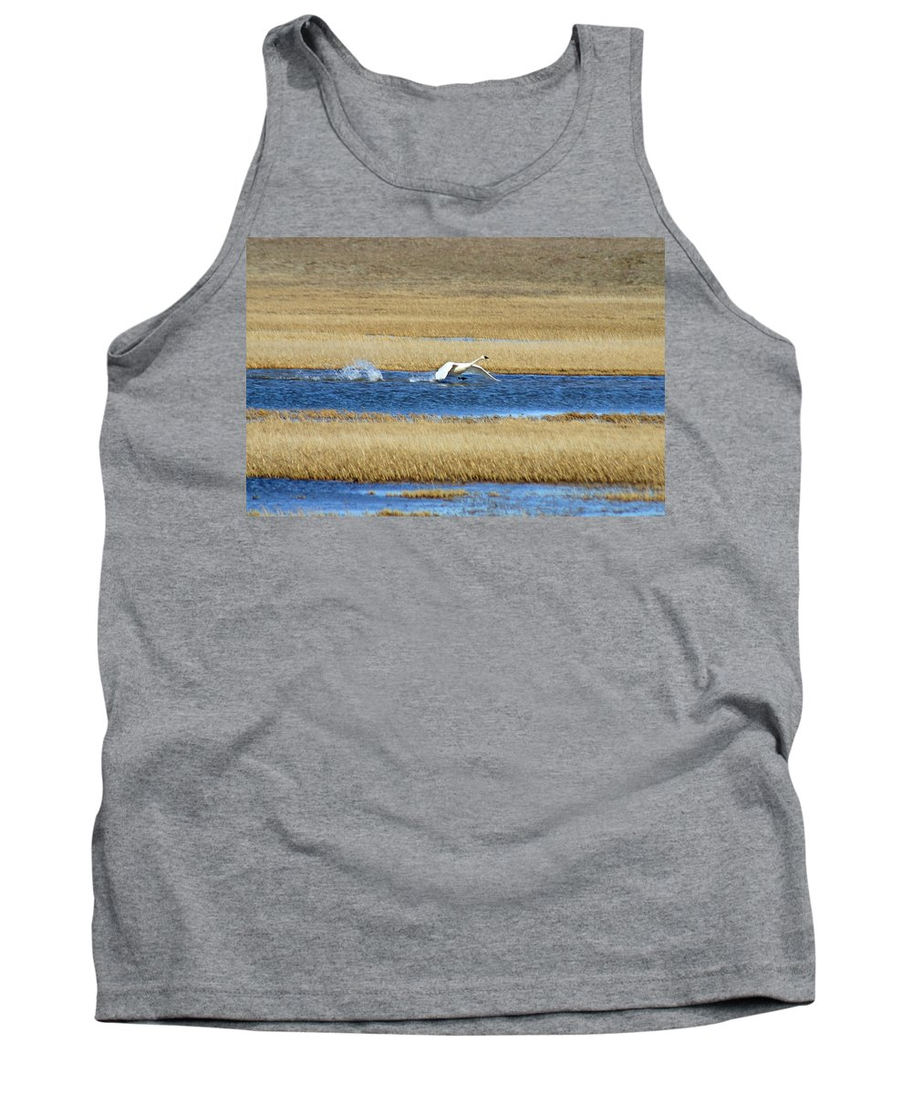 Swan Tank Top featuring the photograph Running On Water by Anthony Jones