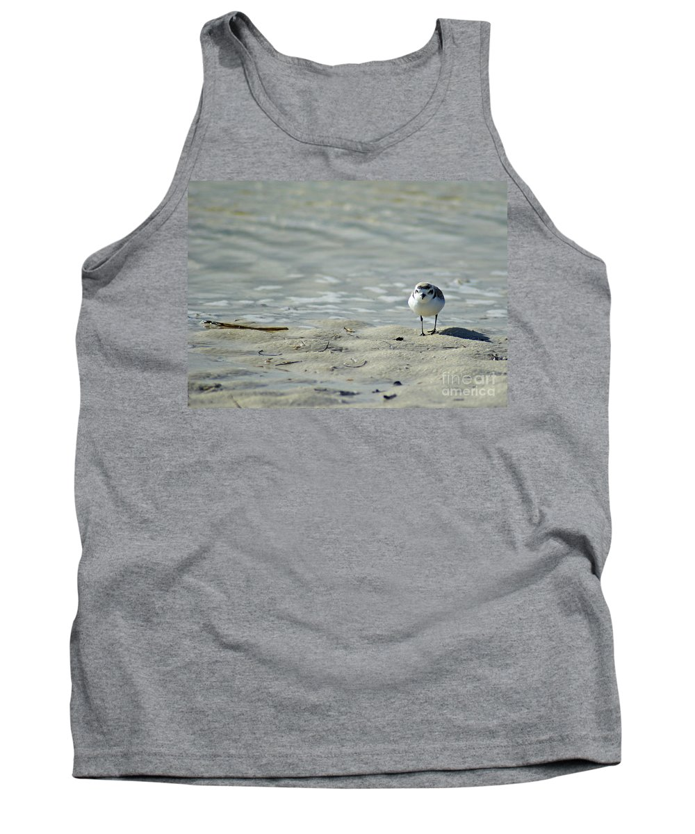 Sandpiper Tank Top featuring the photograph Sandpiper by Angelwolf Photography