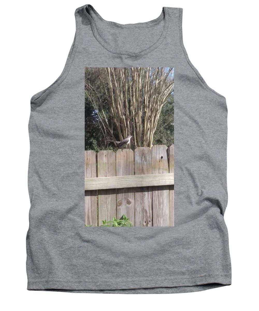 Bird Tank Top featuring the photograph Sitting On A Fence by Rachel Nusz