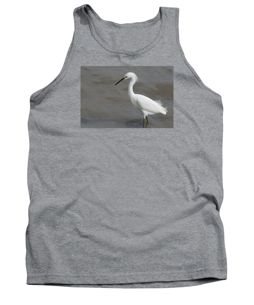 Port Lavaca Tank Top featuring the photograph Snowy Egret by JG Thompson