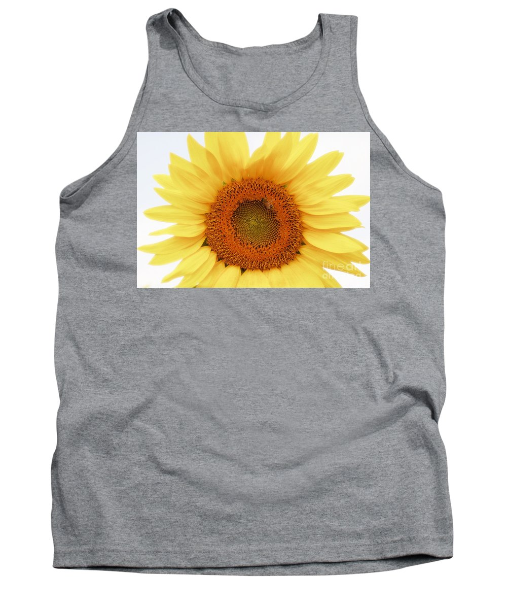 Sunflower Tank Top featuring the photograph Soft Sunflower by Kathleen Struckle