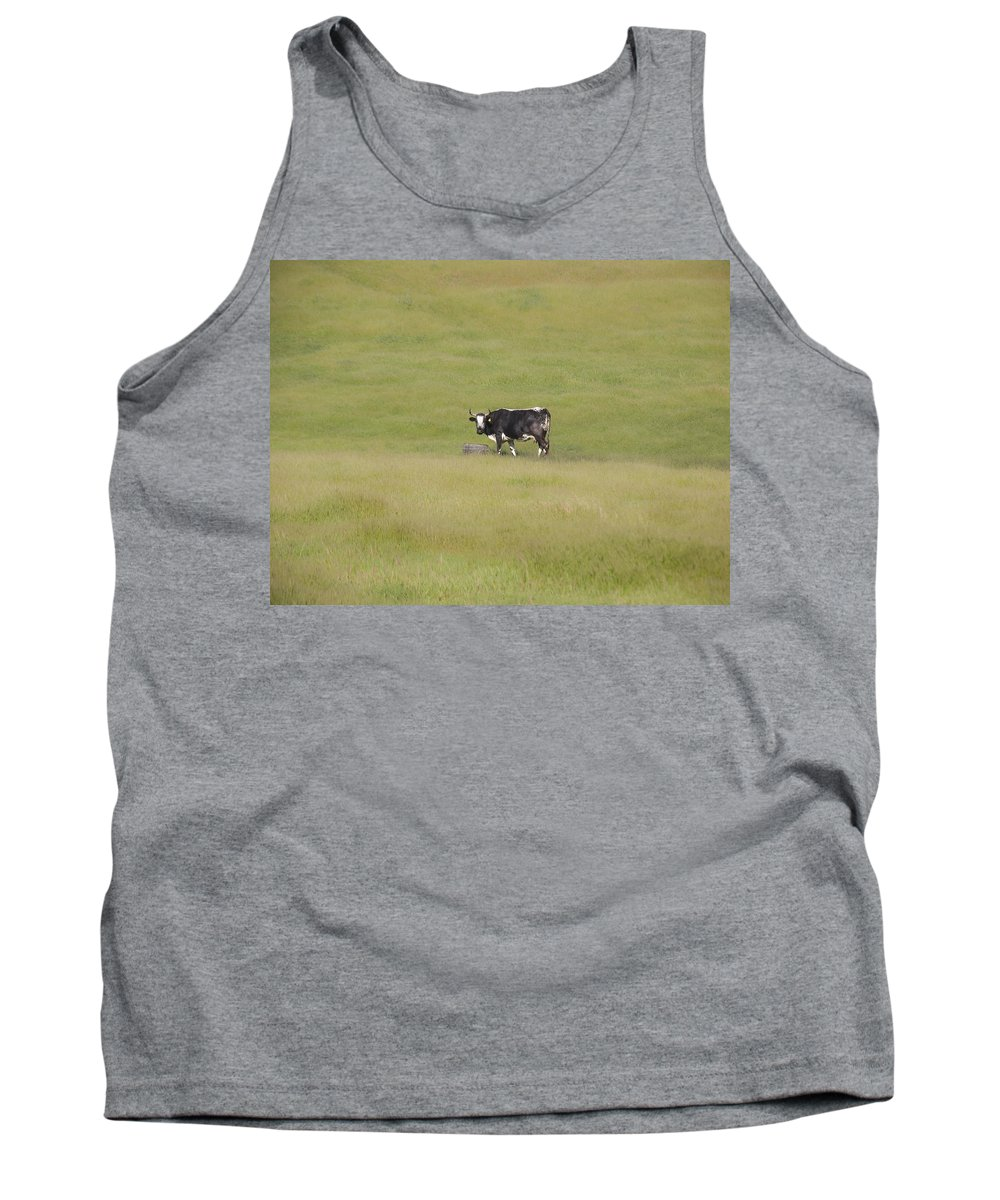 Landscapes Tank Top featuring the photograph Solitude by Karen W Meyer