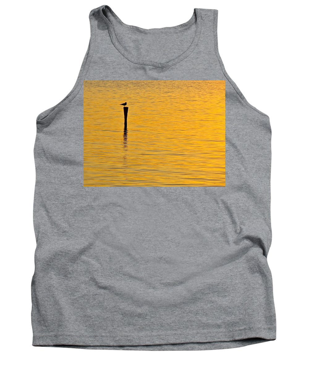 Sea Gull Tank Top featuring the photograph Solitude by Mike Reilly