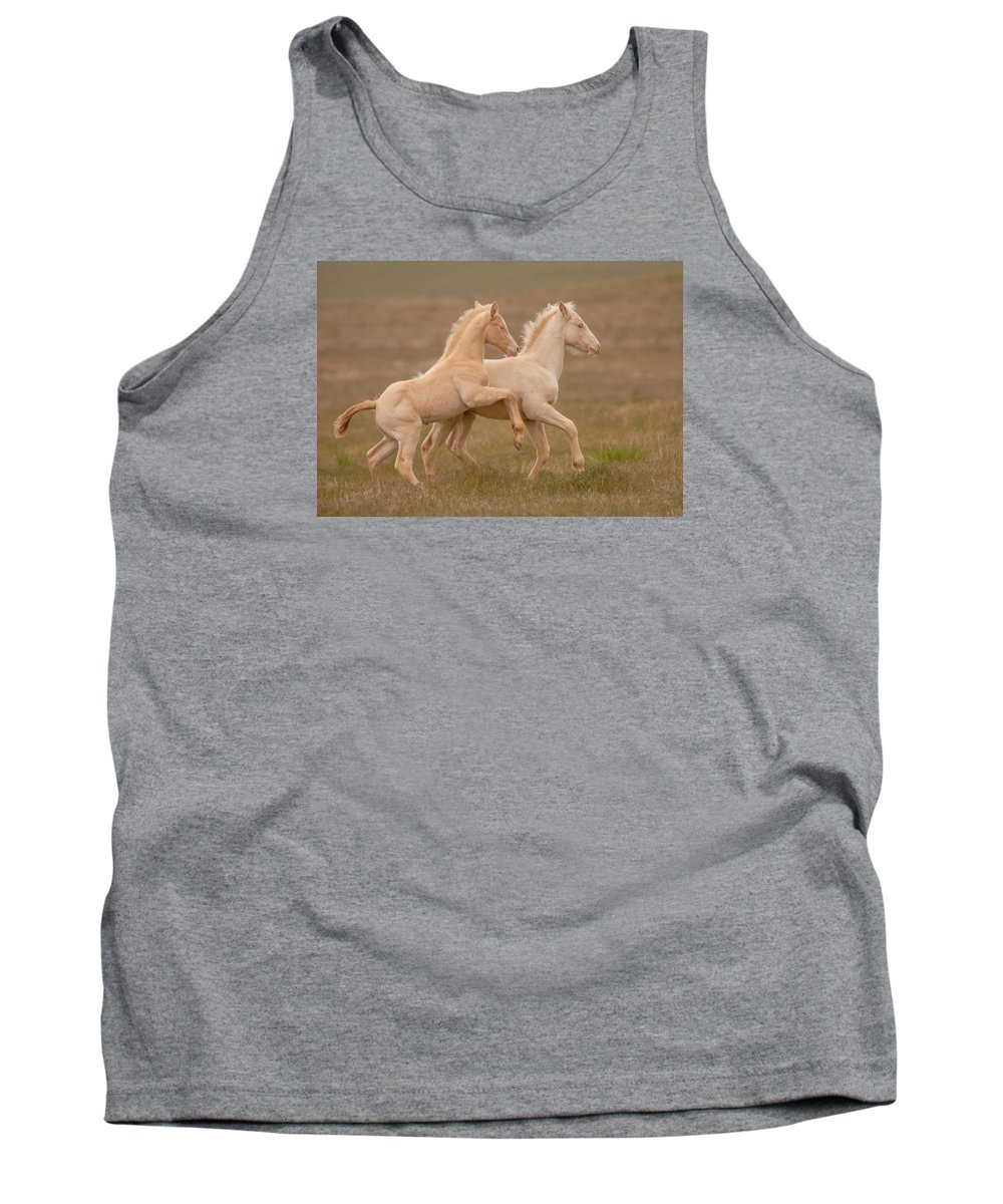 Wild Horse Tank Top featuring the photograph Spring Time by Kent Keller
