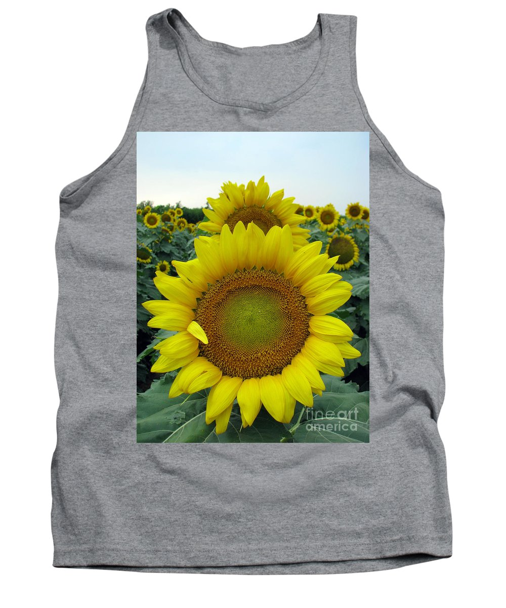 Sunflowers Tank Top featuring the photograph Sunflowers by Amanda Barcon
