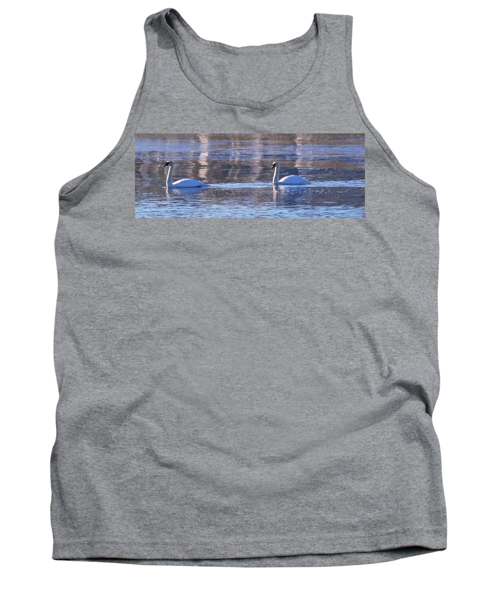 Moswetuset Hummock Quincy Ma Tank Top featuring the photograph Swans In Winter by Bill Driscoll