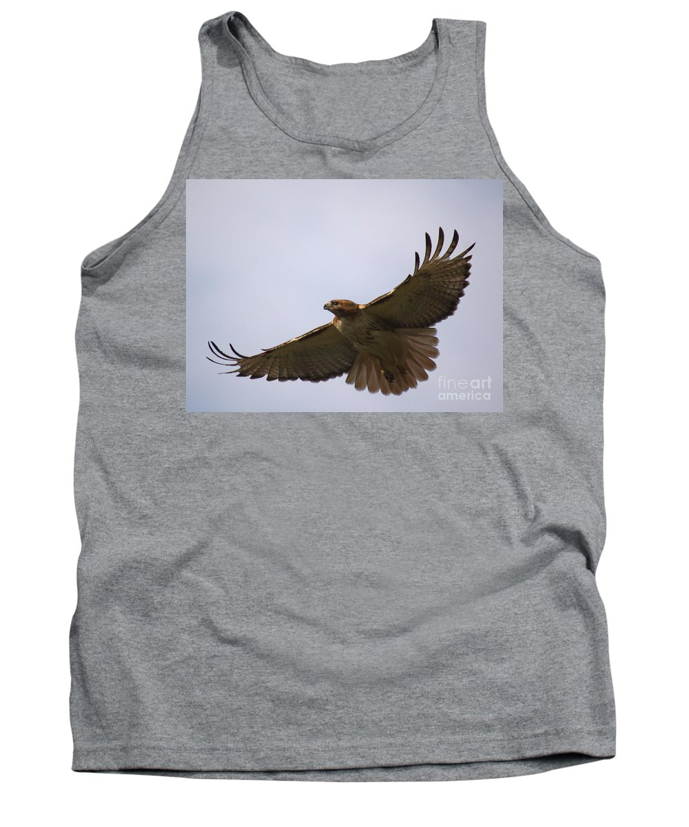 Hawk Tank Top featuring the photograph Taking Survey by Robert Pearson