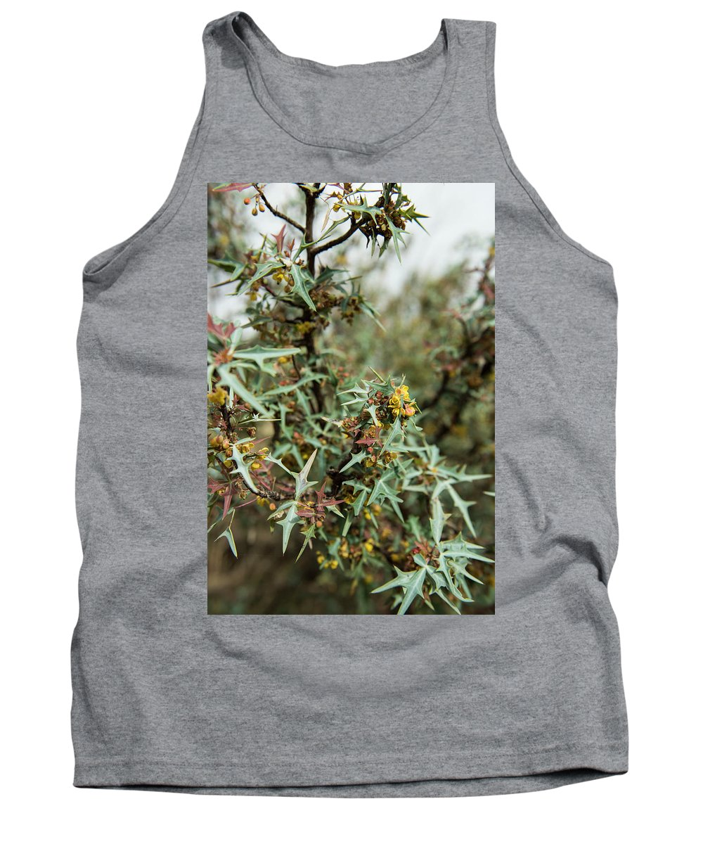Algerita Tank Top featuring the photograph Texas Algerita Bush by Kevin McCollum