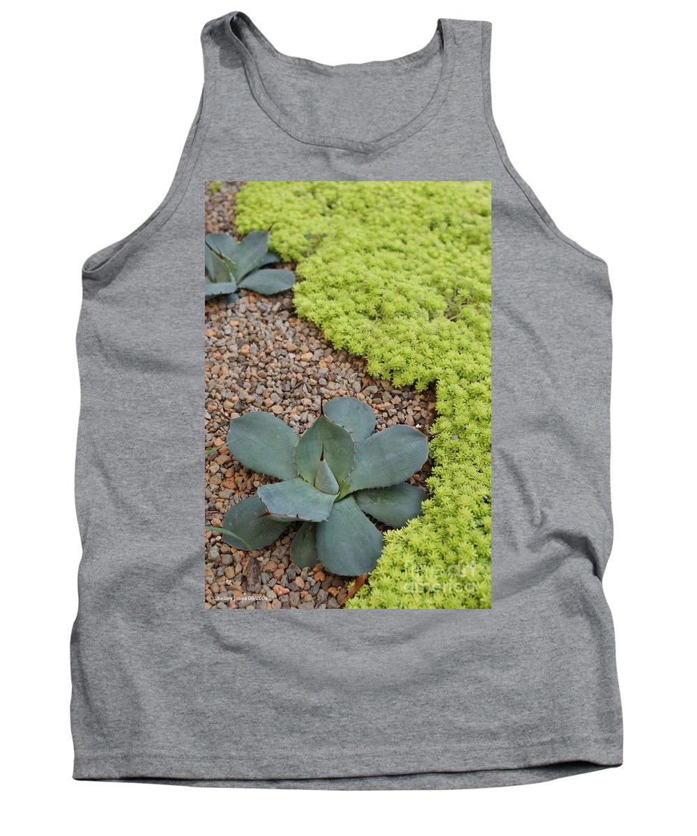 Cacti Tank Top featuring the photograph Texture by Shelley Jones