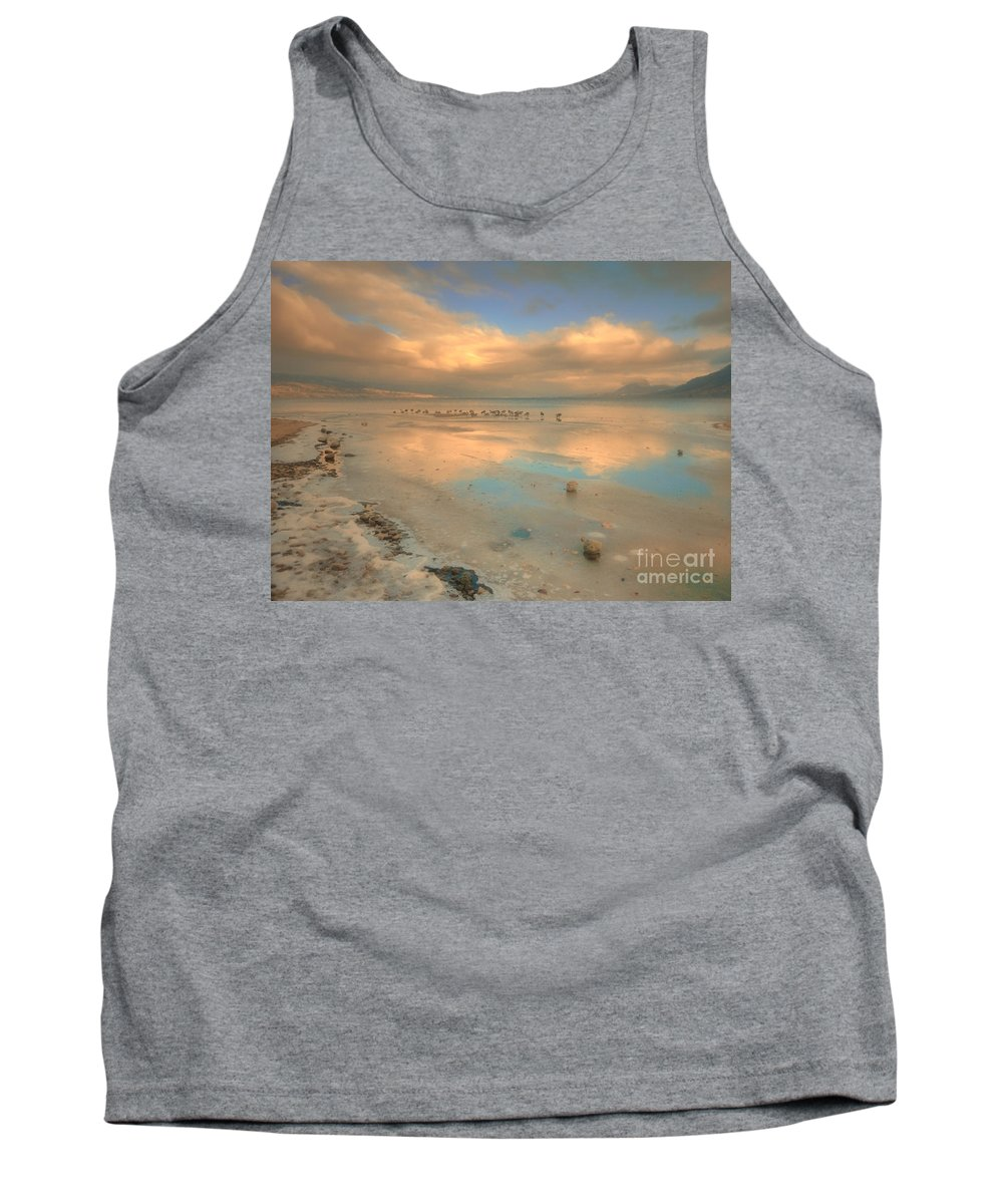 Birds Tank Top featuring the photograph The Birds And The Ice by Tara Turner