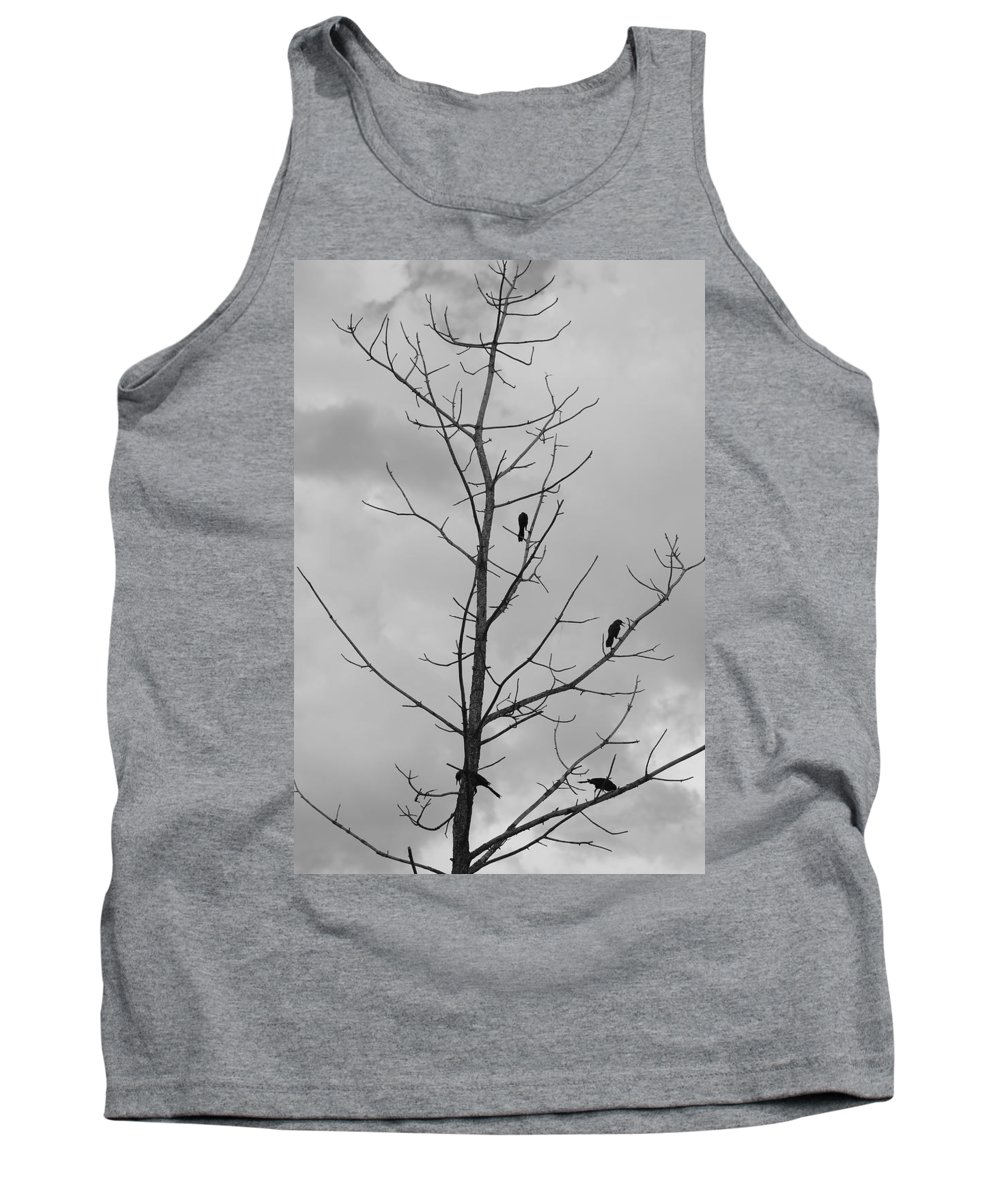 Tree Tank Top featuring the photograph The Birds by Rob Hans