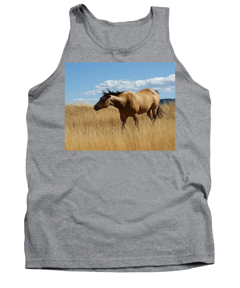 Horse Tank Top featuring the photograph The Horse by Ernie Echols
