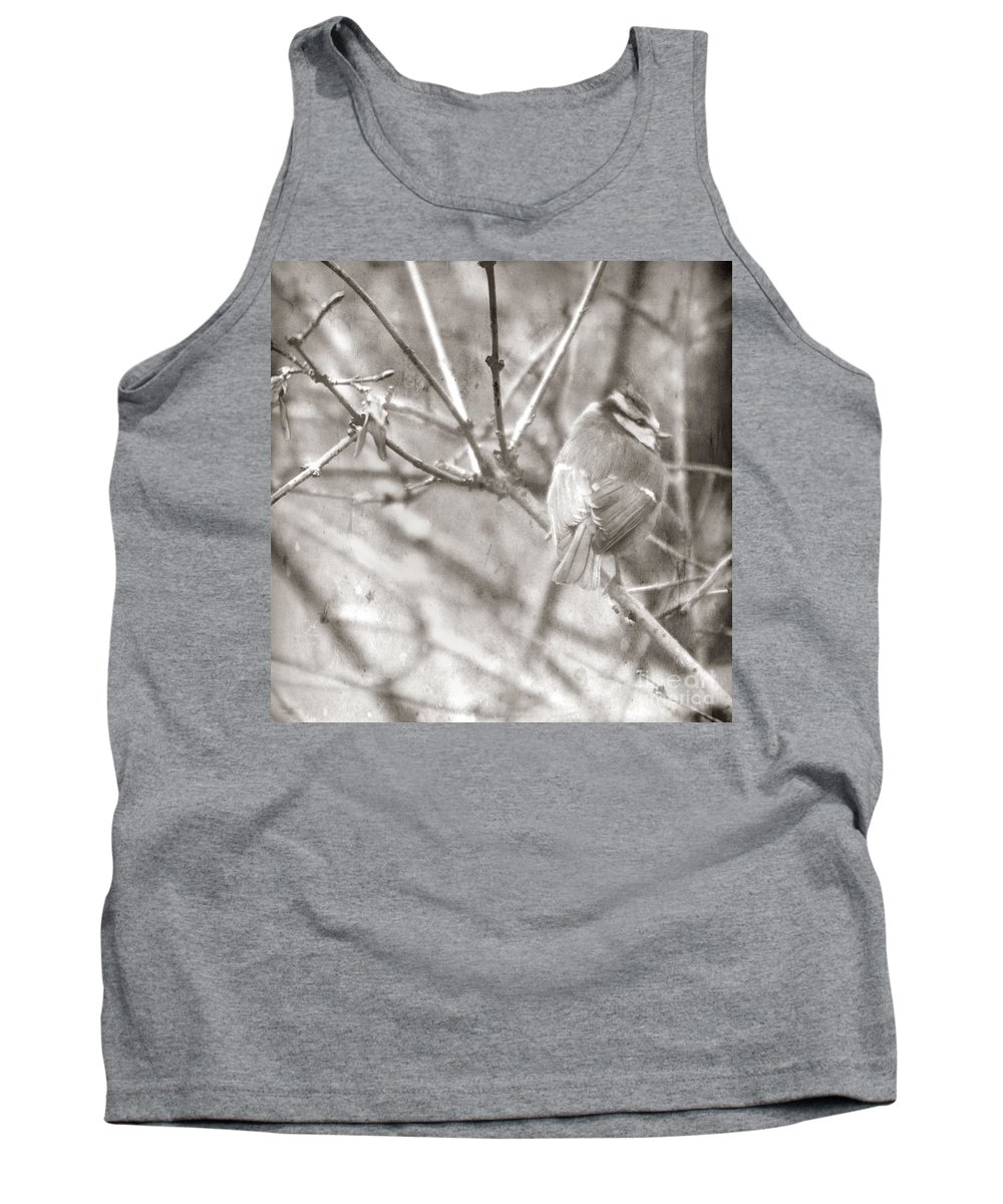 Blue Tit Tank Top featuring the photograph The Winter Time by Angel Tarantella
