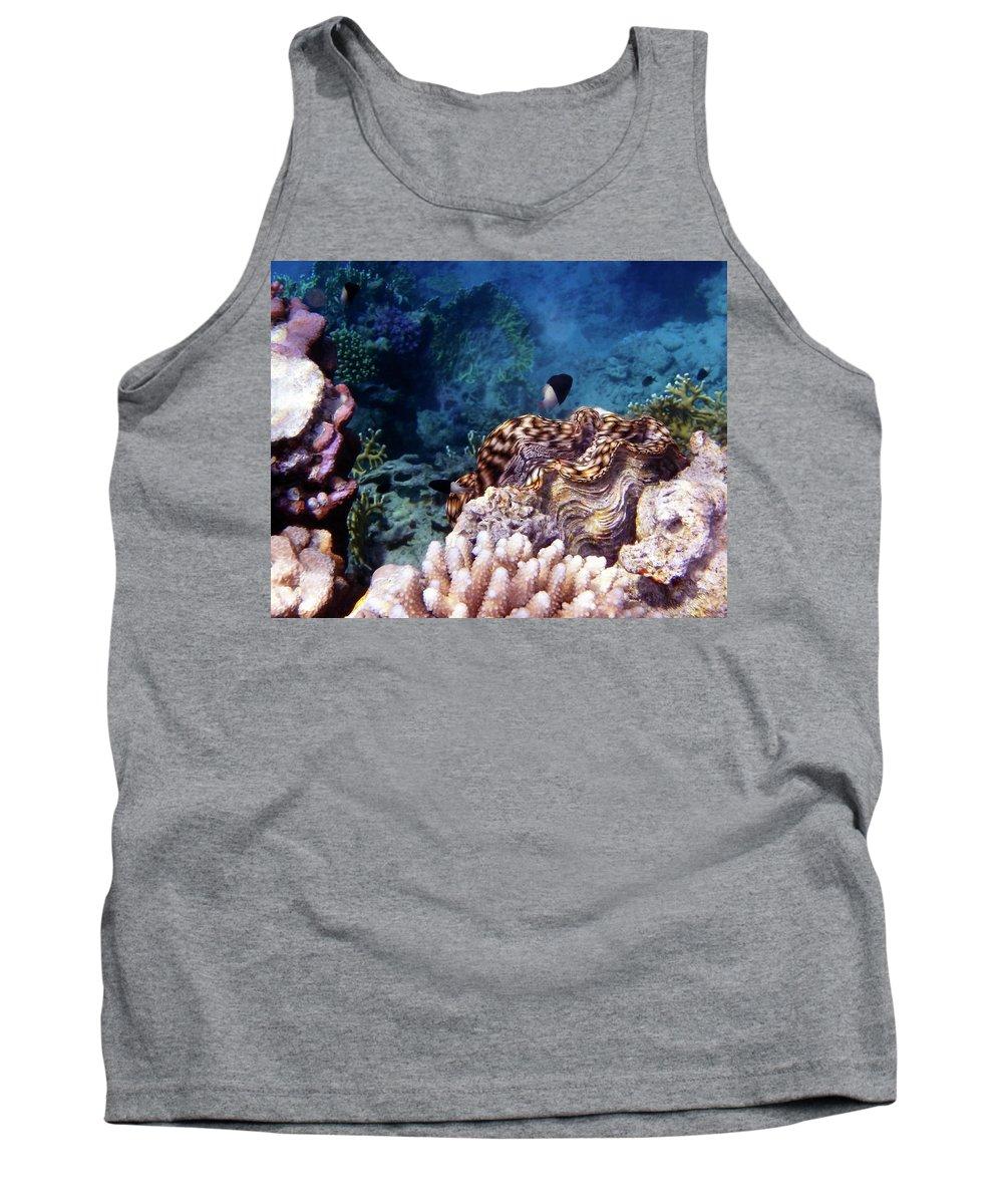 Sea Tank Top featuring the photograph Tridacna Squamosa by Johanna Hurmerinta