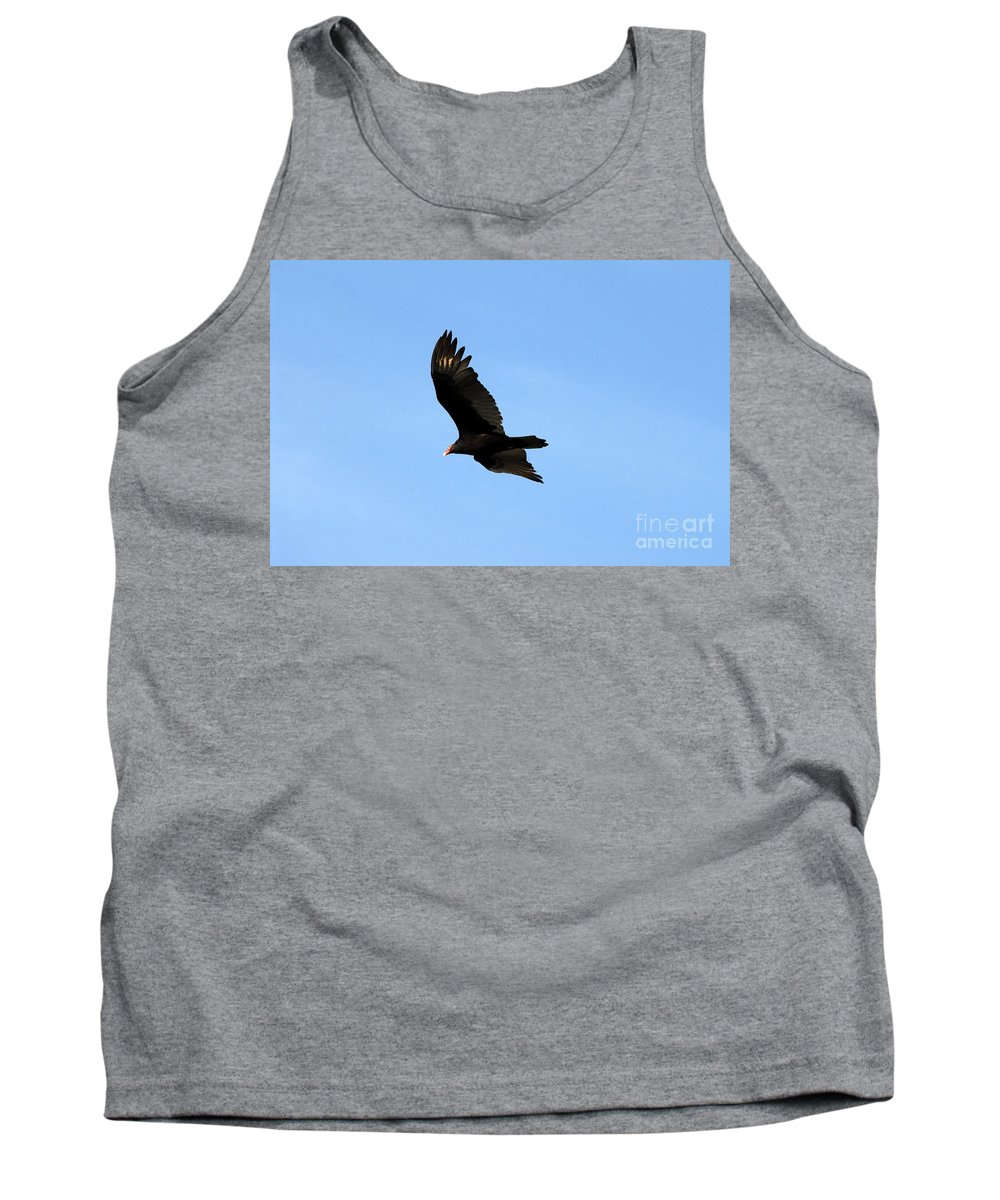 Turkey Vulture Tank Top featuring the photograph Turkey Vulture by David Lee Thompson