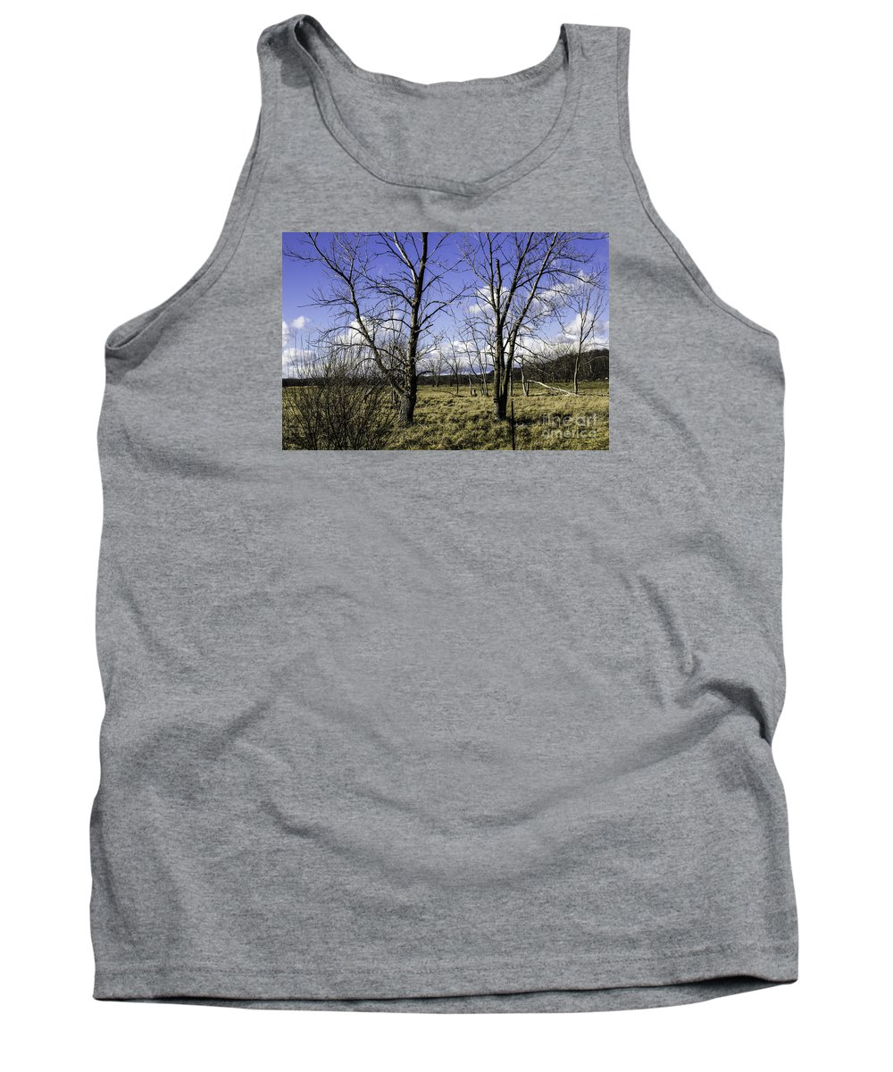 Blue Tank Top featuring the photograph Two Trees Of Blue by Doug Daniels