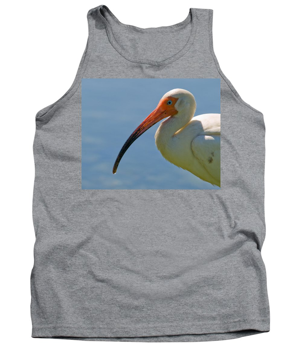 Ibis; White; Bird; Florida; Frog; Pollywogs; Pond; Seabird; Shore; Coast; Water; Fowl; Waterfowl; Fe Tank Top featuring the photograph White Ibis by Allan Hughes
