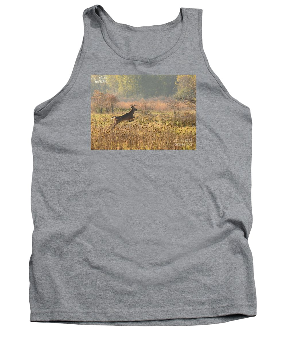 Deer Tank Top featuring the photograph White Tail Morning by Charles Owens