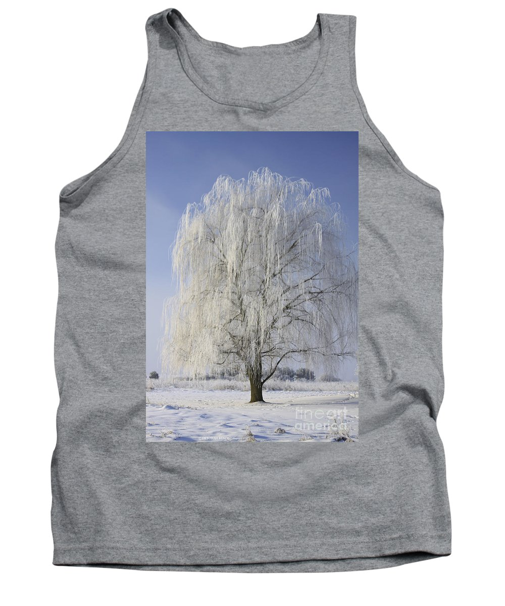 Willow Tank Top featuring the photograph Willow In Ice by Deborah Benoit