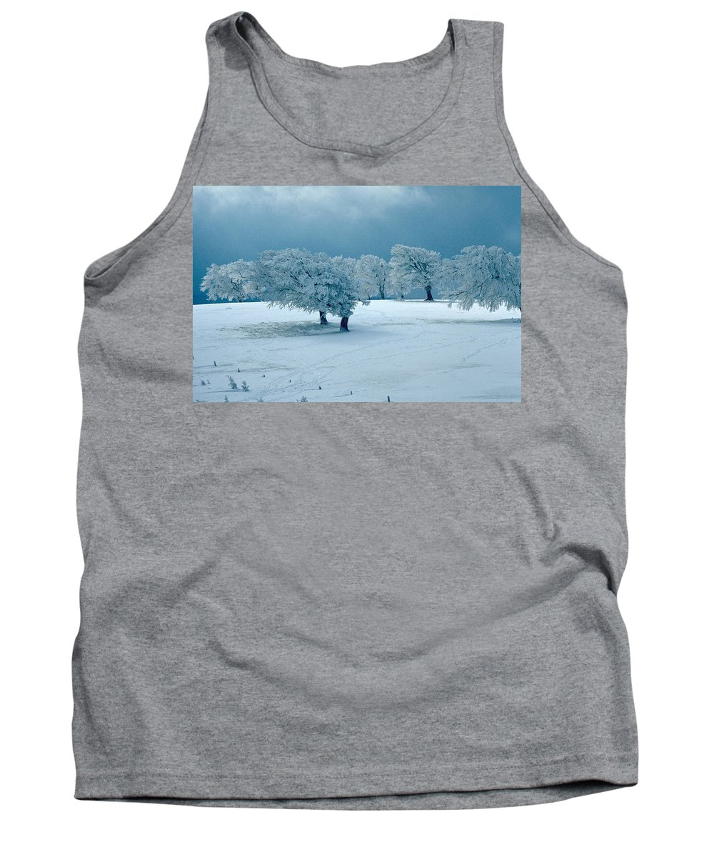 Winter Tank Top featuring the photograph Winter Wonderland by Flavia Westerwelle