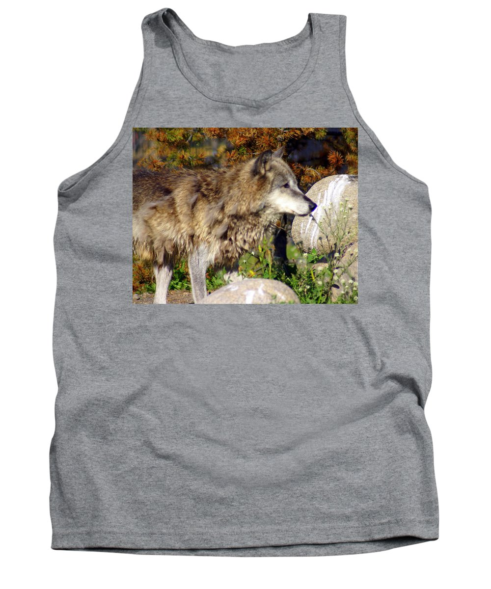 Wolf Tank Top featuring the photograph Wolf On Patorl by Marty Koch
