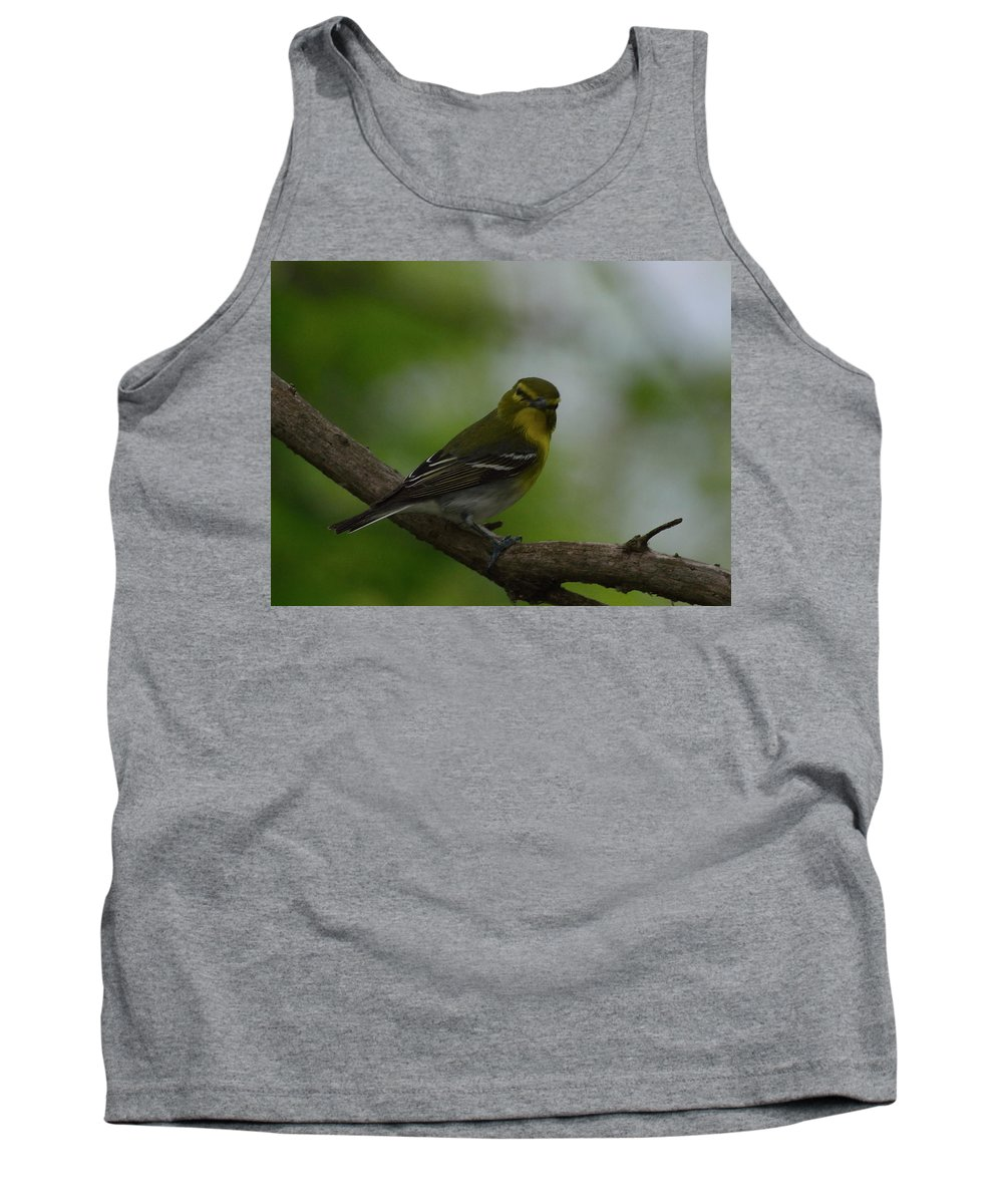 North American Tank Top featuring the photograph Yellow-throated Vireo On Branch by Mark Wallner