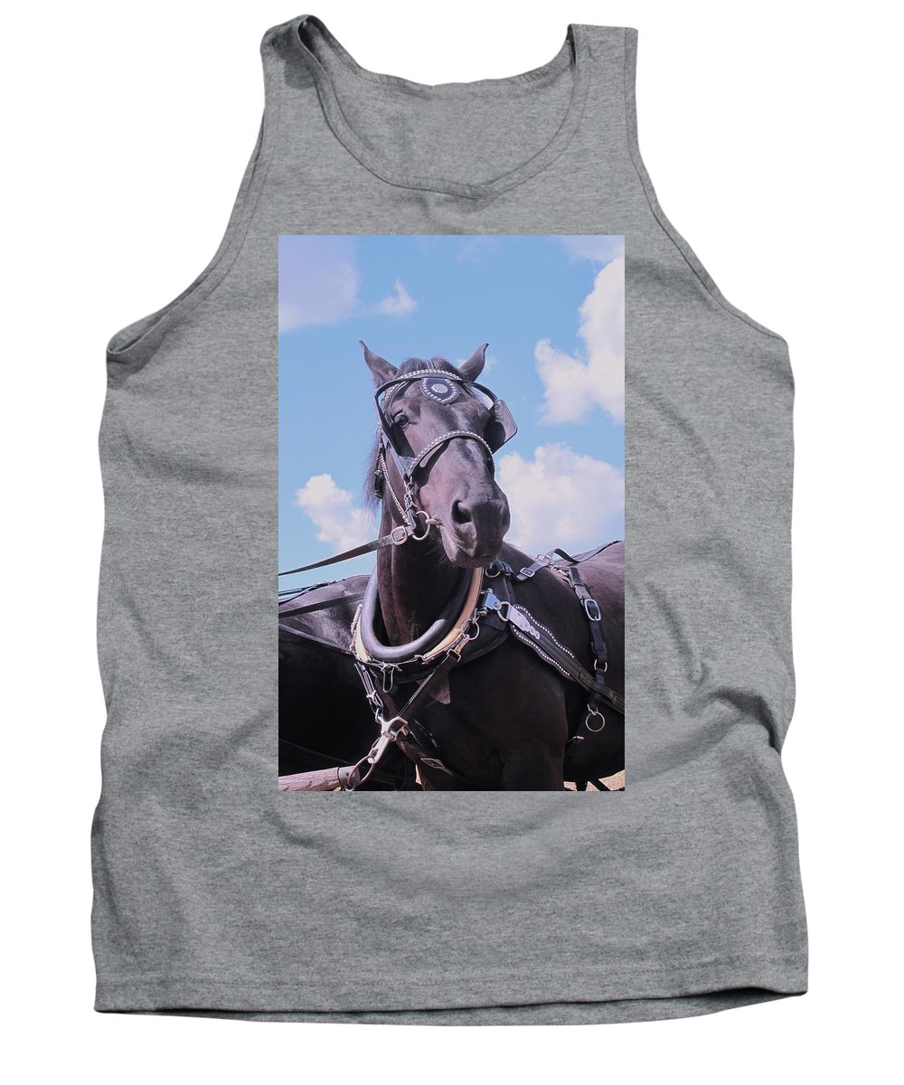 Percheron Tank Top featuring the photograph Yes I Am The Most Beautiful by Ian MacDonald