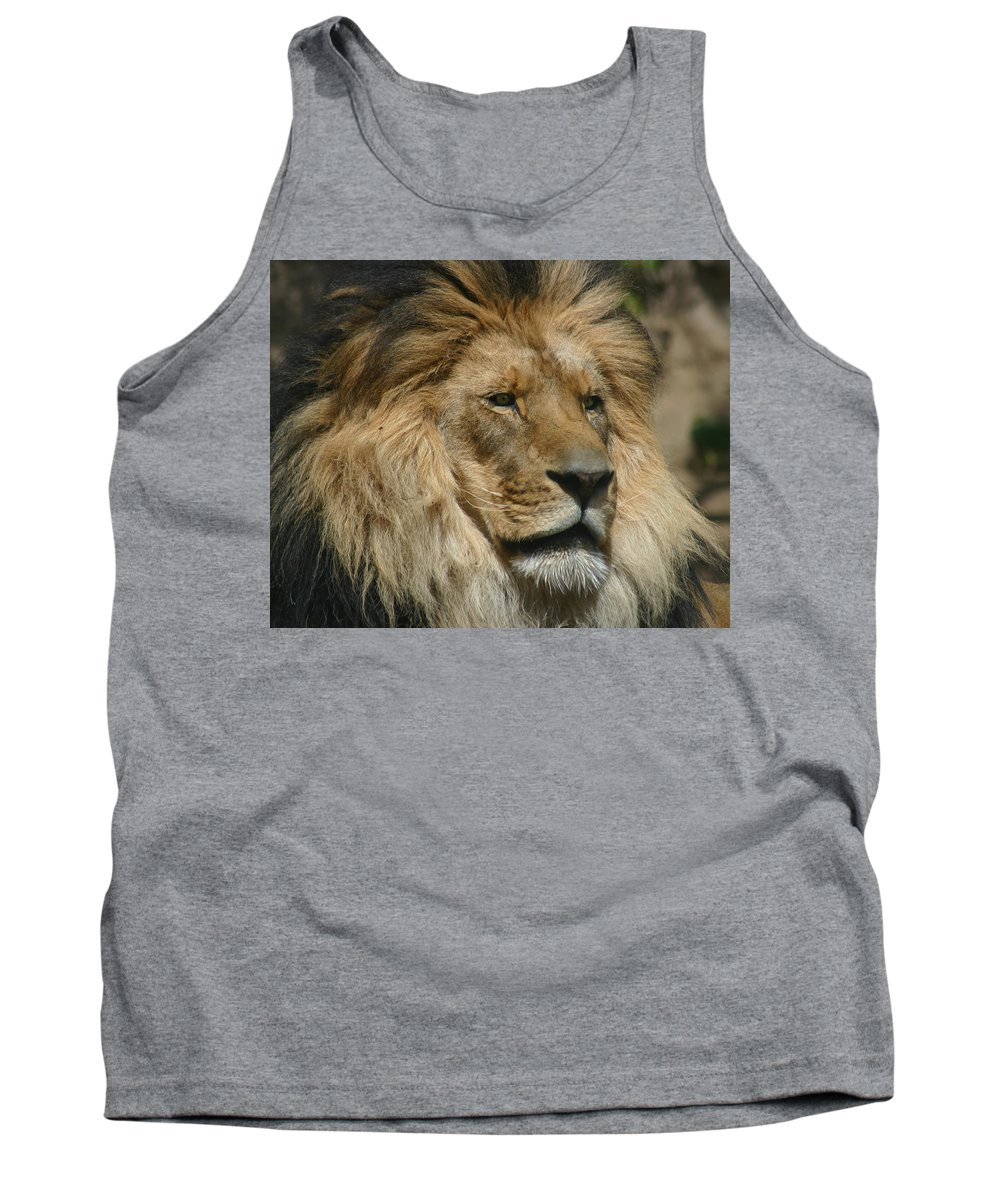 Lion Tank Top featuring the photograph Your Majesty by Anthony Jones