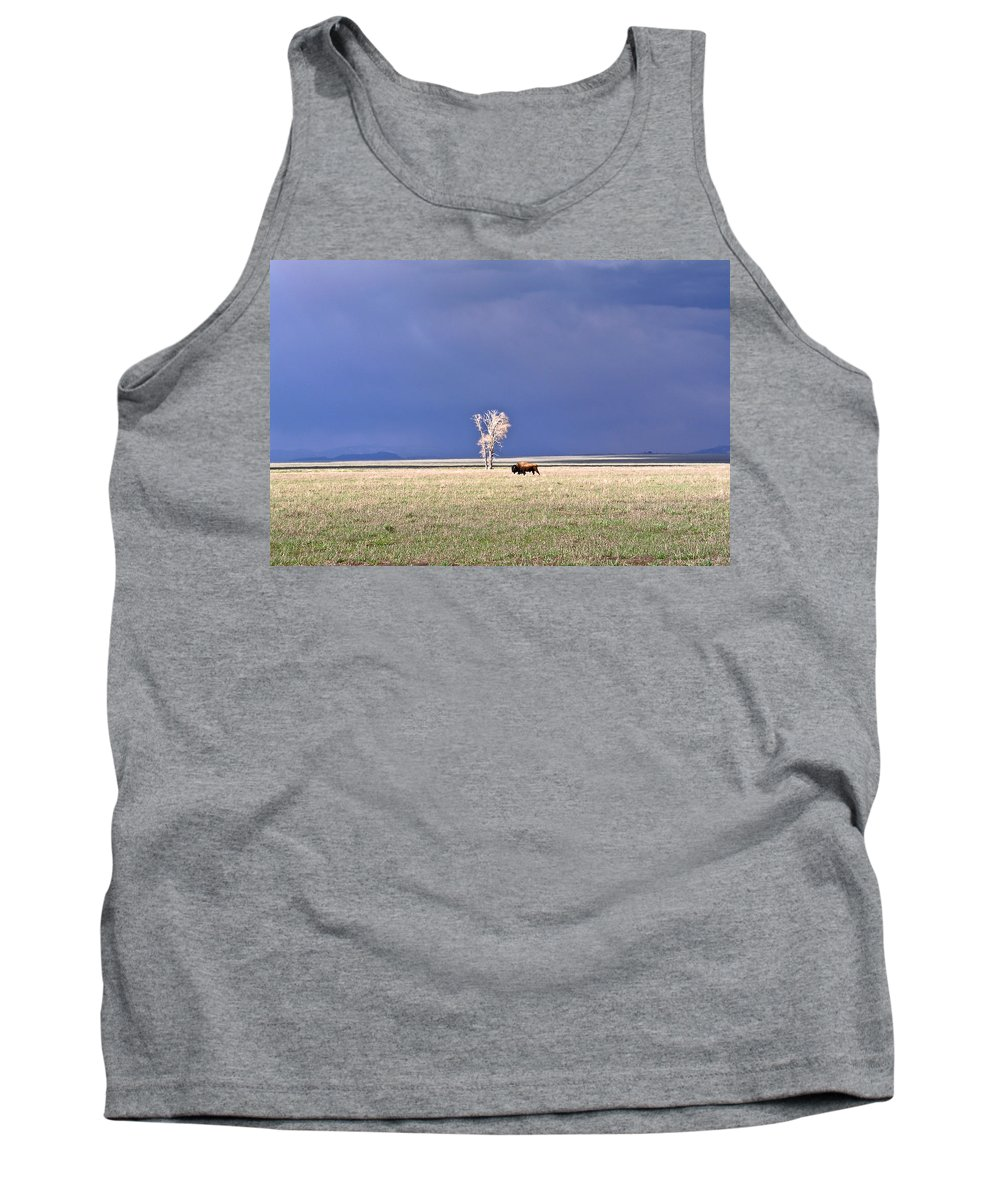 Lone Tank Top featuring the photograph Lone Buffalo After Storm by Douglas Barnett
