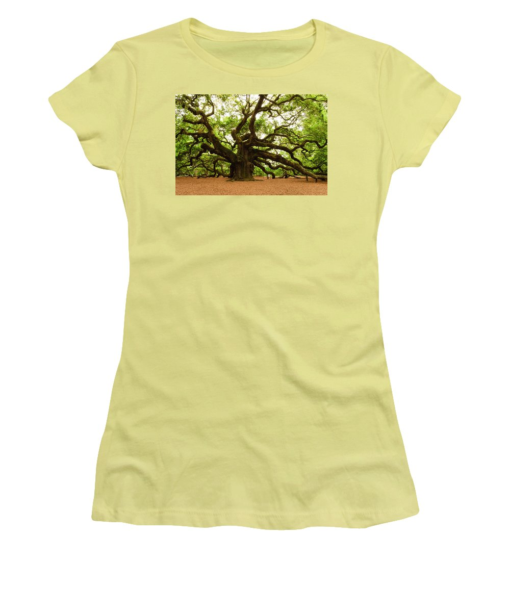 Tree Women's T-Shirt (Athletic Fit) featuring the photograph Angel Oak Tree 2009 by Louis Dallara