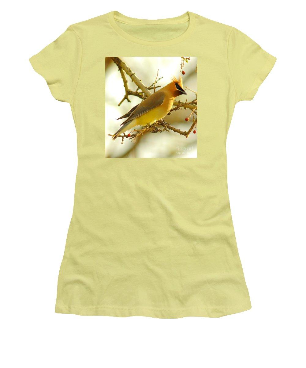 Cedar Waxing Junior T-Shirts