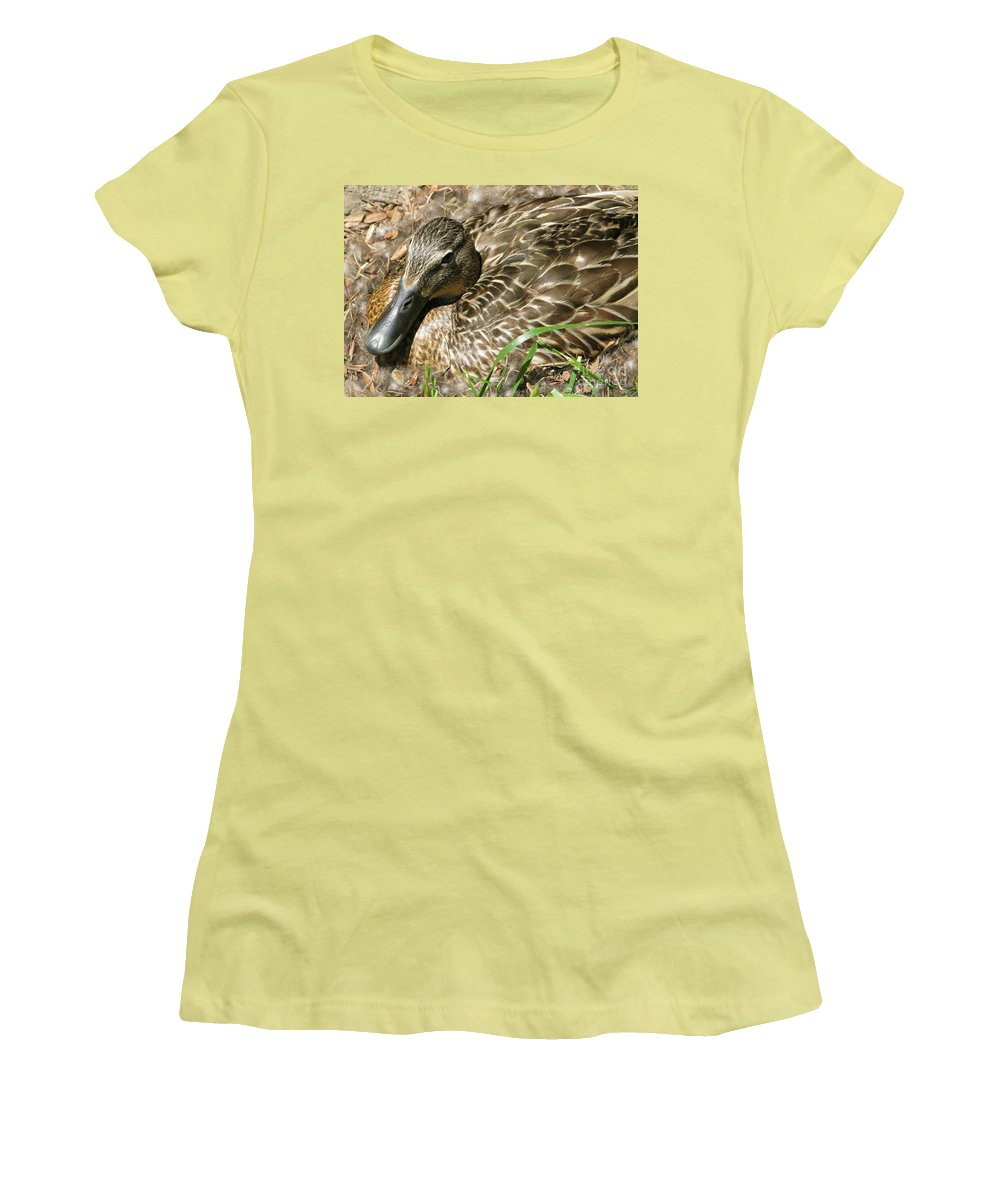 Mallard Women's T-Shirt (Athletic Fit) featuring the photograph Nesting Mallard by Ann Horn