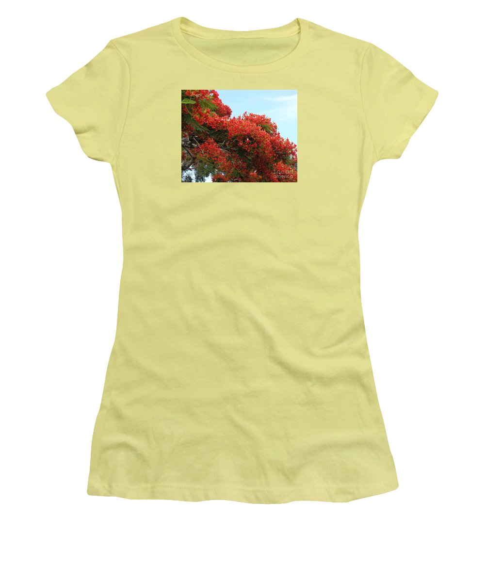 Trees Women's T-Shirt (Athletic Fit) featuring the photograph Royal Poinciana Branch by Mary Deal