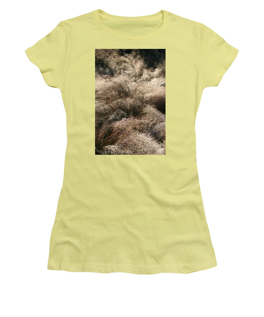 Grasses Women's T-Shirt (Athletic Fit) featuring the photograph Sparkling Grasses by Nadine Rippelmeyer