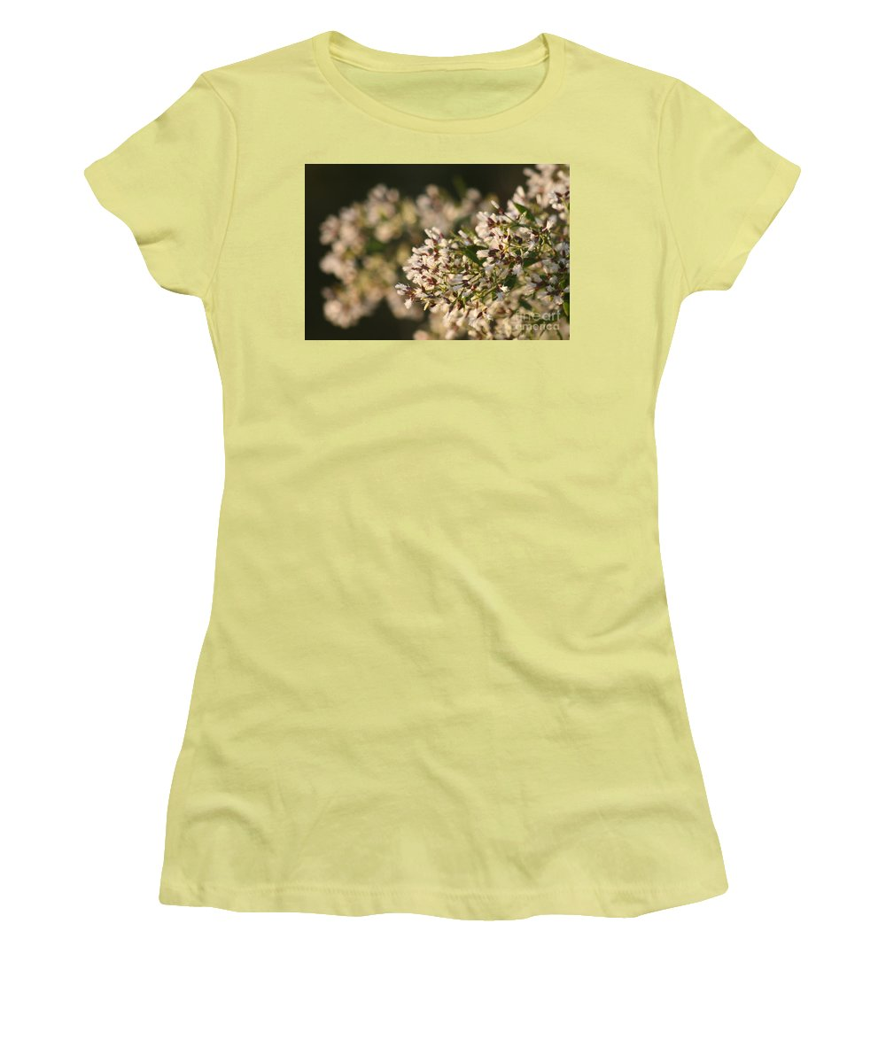 White Women's T-Shirt (Athletic Fit) featuring the photograph White Flowers by Nadine Rippelmeyer